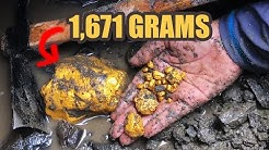 Biggest Single GOLD NUGGET Ever UNEARTHED on the Island || RECORD BREAKING!