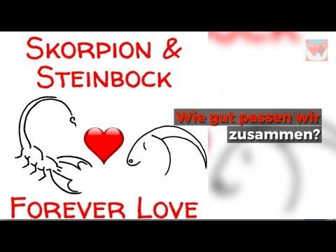 Skorpion Steinbock Liebe Horoskop Youtube