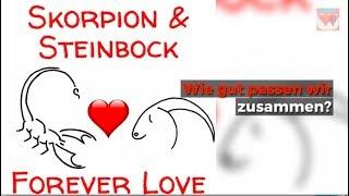 ♡ ♡ Skorpion Steinbock Liebe Horoskop