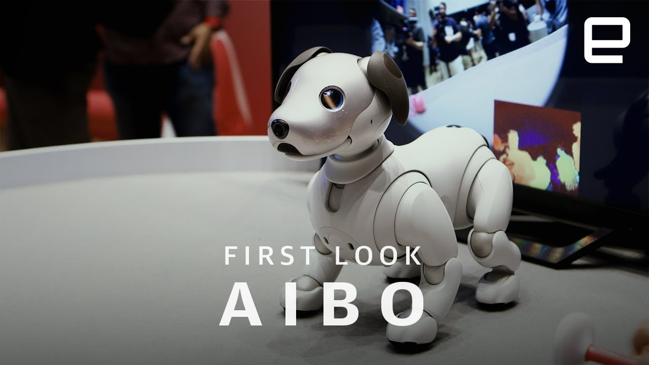 Sony Aibo First Look: Impossibly Cute Robot Dog