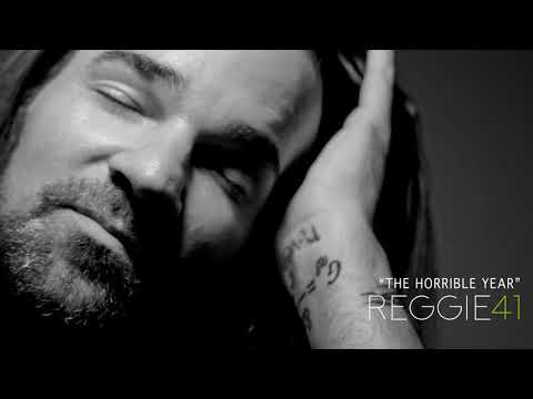 """Reggie and the Full Effect """"The Horrible Year"""""""