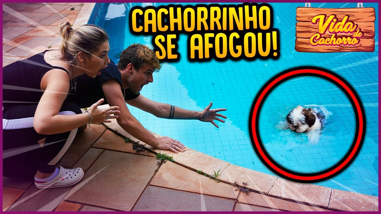 NOSSO CACHORRINHO QUASE SE AFOGOU!! - VIDA DE CACHORRO #2 [ REZENDE EVIL ]