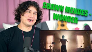 Download Vocal Coach Reacts to Shawn Mendes - Wonder