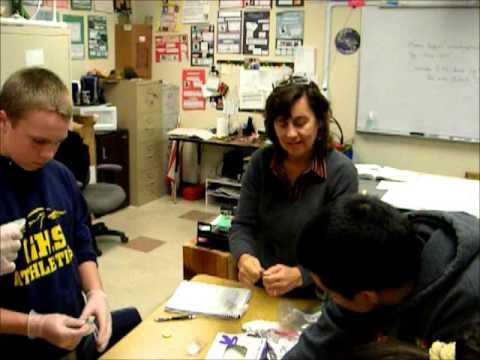 Golden Hills School   Science Lab Experiment Centers 11 13