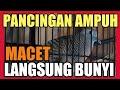 Perkutut Lokal Gacor Ampuh Pancingan Perkutut Macet  Mp3 - Mp4 Download