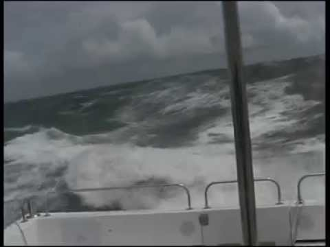 Wildcat 36 in Gale force 8