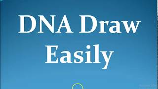 DNA draw easily [DNA আঁক সহজে]