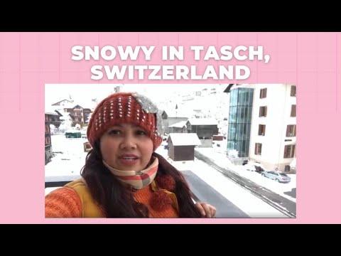 Snowy In Tasch, Switzerland