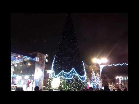Новогодняя елка Донецка 2012-2013