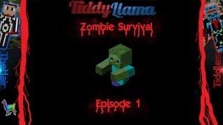 Minecraft Zombie Apocalypse, Day 1