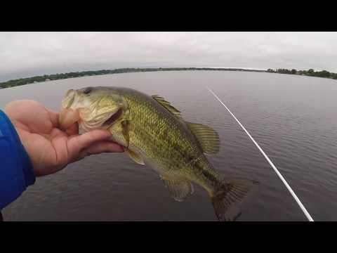 Bass And Pike Fishing On Lake Cadillac/ Lake Mitchell