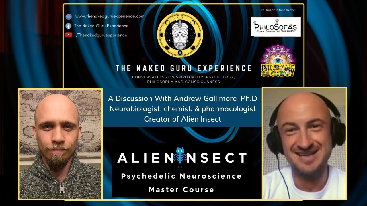 EP. 13: Andrew Gallimore | DMT: ALIEN INSECT & THE DMATRIX MACHINE