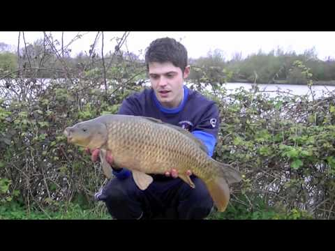 Total Carping: The Steamies Blog - Willow Park Fishery