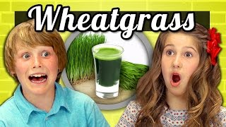 KIDS vs. FOOD #11 - WHEATGRASS SHOTS