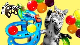 🐾😺  ORBEEZ. Как котики играют с БОЛЬШИМИ шариками Орбиз. Смешное видео про кошек. КОТиК ДИКСОН