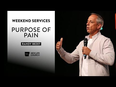 Purpose Of Pain - Randy Bezet