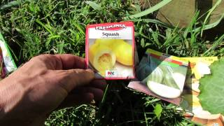 Quick introduction to Squash Varieties & Round Zucchini: My 1st Vegetable Garden - MFG 2013