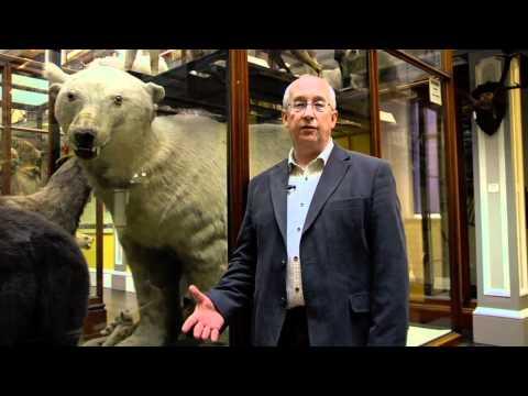 Nigel - Dead Zoo