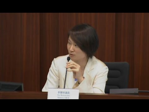 Panel on Financial Affairs (2013/07/16)