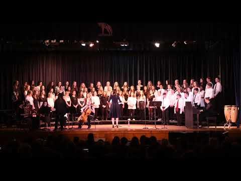 Winter Dreams by Pink Zebra performed by the Wall Intermediate School Choir
