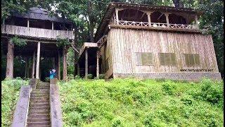 TREE HOUSE / Top Slip Tree House / Tree Top House / Top Slip / Tree House Resort
