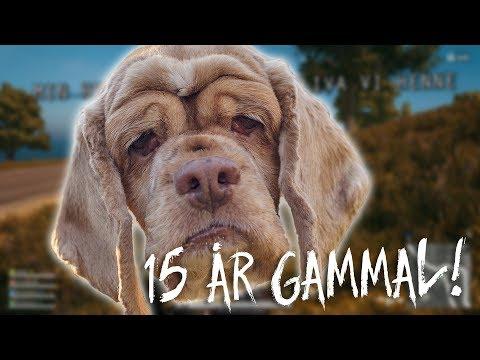 Karl har en hund | PUBG [FUNNY MOMENTS]