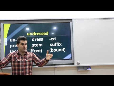 Morphology  (Linguistics / Dilbilim 67)