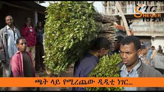 Dangerous for Life : Anti Mosquito DDT For Kchat Plant in Ethiopia