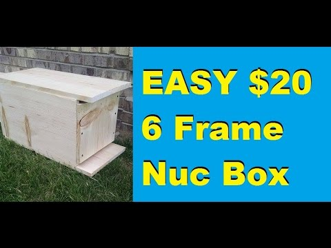 How to Make a Simple 6 Frame Nuc Box for $20 - YouTube