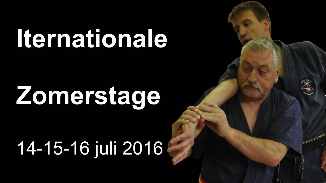 Demonstration 6: Iternationale Zomerstage 14 15 16 juli 2016 Aikido Aikijujutsu Kobukai