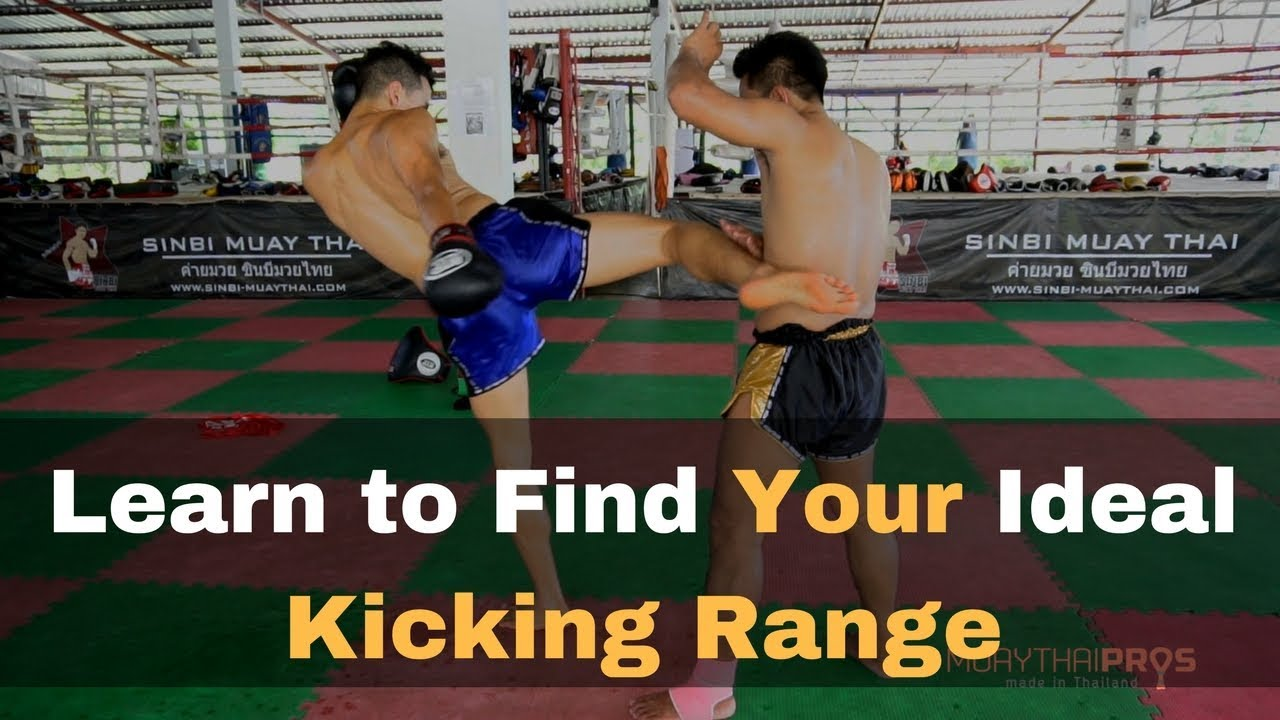 Bcaa Kick Body Attack how to throw a muay thai body kick with perfect technique