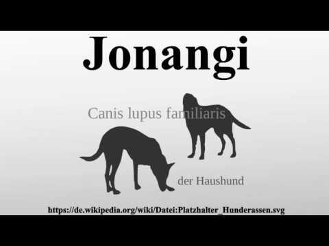 Jonangi