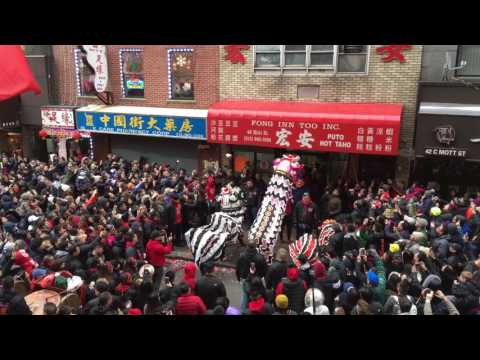 Lion Dance NYC Chinatown Chinese New Year 2017 @ Fong Inn Too Part 1