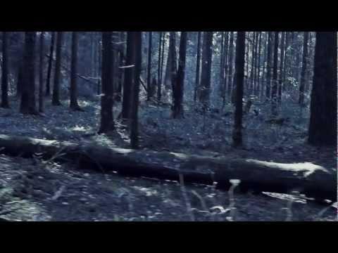 Стальная бабочка саундтреки из фильма