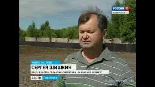 Вести-Хабаровск. Строительство современного овощехранилища