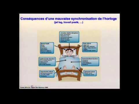 L'horloge biologique, Dr C. Gronfier, conf. sommeil et travail à horaires atypiques