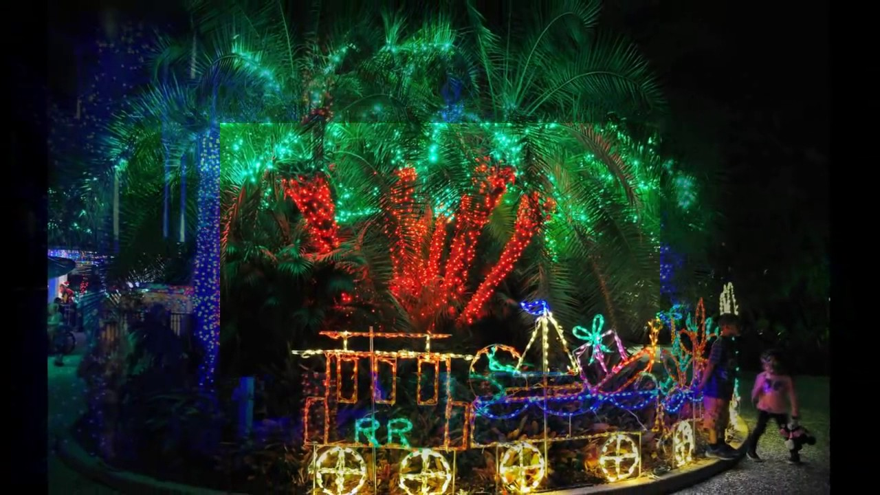 Holiday lights in the gardens florida botanical gardens - Florida botanical gardens christmas lights ...