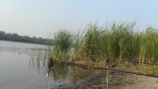 Рыбалка кормачками на реке(Дневник рыболова)