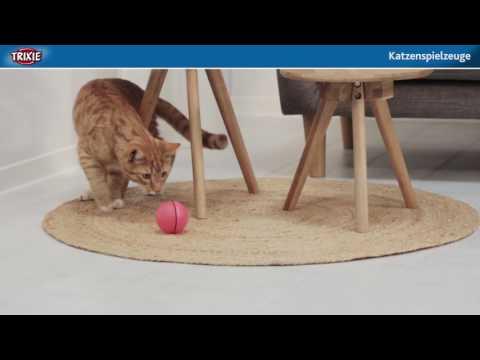 Katzen richtig beschäftigen mit Katzenspielzeug von TRIXIE Heimtierbedarf