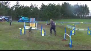 Magic G1 Agility 1st.mov