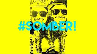 Havoc brother somber! Song