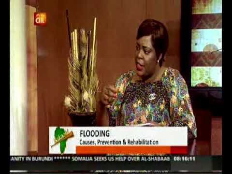 Dr John Osonwa Climate Change, Ecological Funds and Flooding in Nigeria