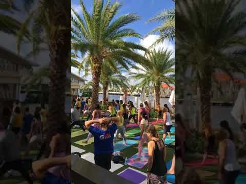 Yoga Videos | Free Yoga Classes Every Saturday In Fort Lauderdale