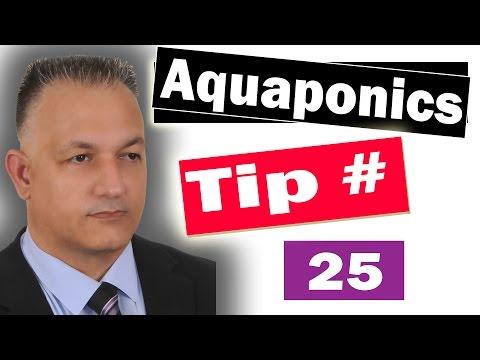 Aquaponics Definition - WHAT