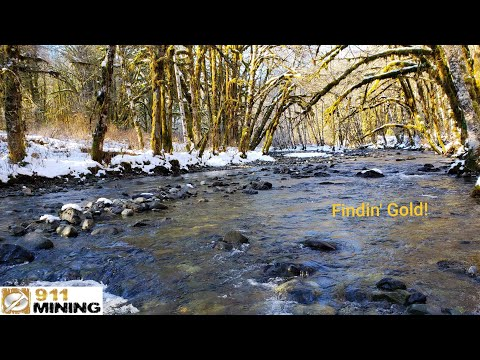 Finding Good Placer Gold On A New Creek!