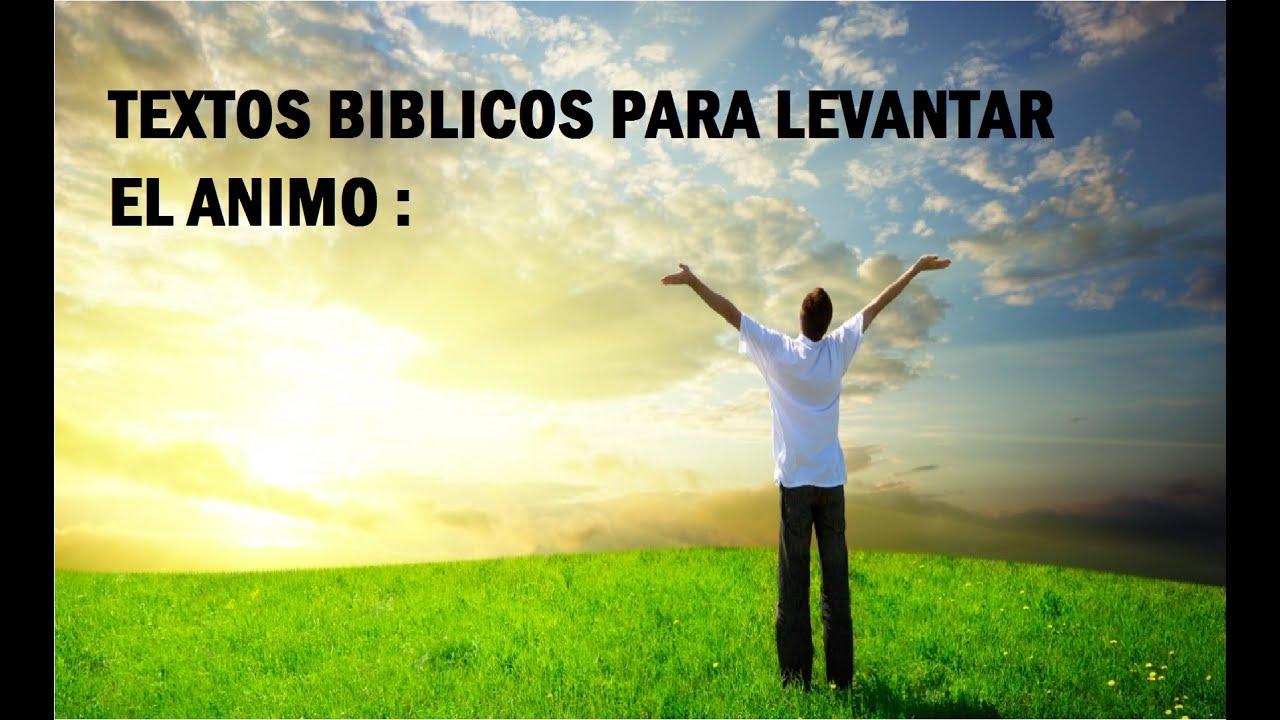Versiculos De La Biblia De Animo: TEXTOS BIBLICOS PARA LEVANTAR EL ANIMO