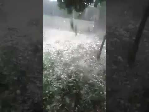 מכת ברד בלבנון מחסלת עץ שלם! מטורףףף