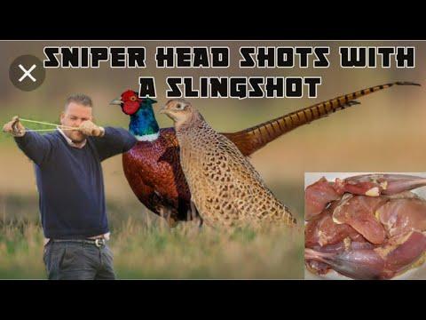 Catapult Hunting Kills