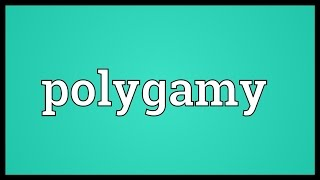 Polygamy Meaning