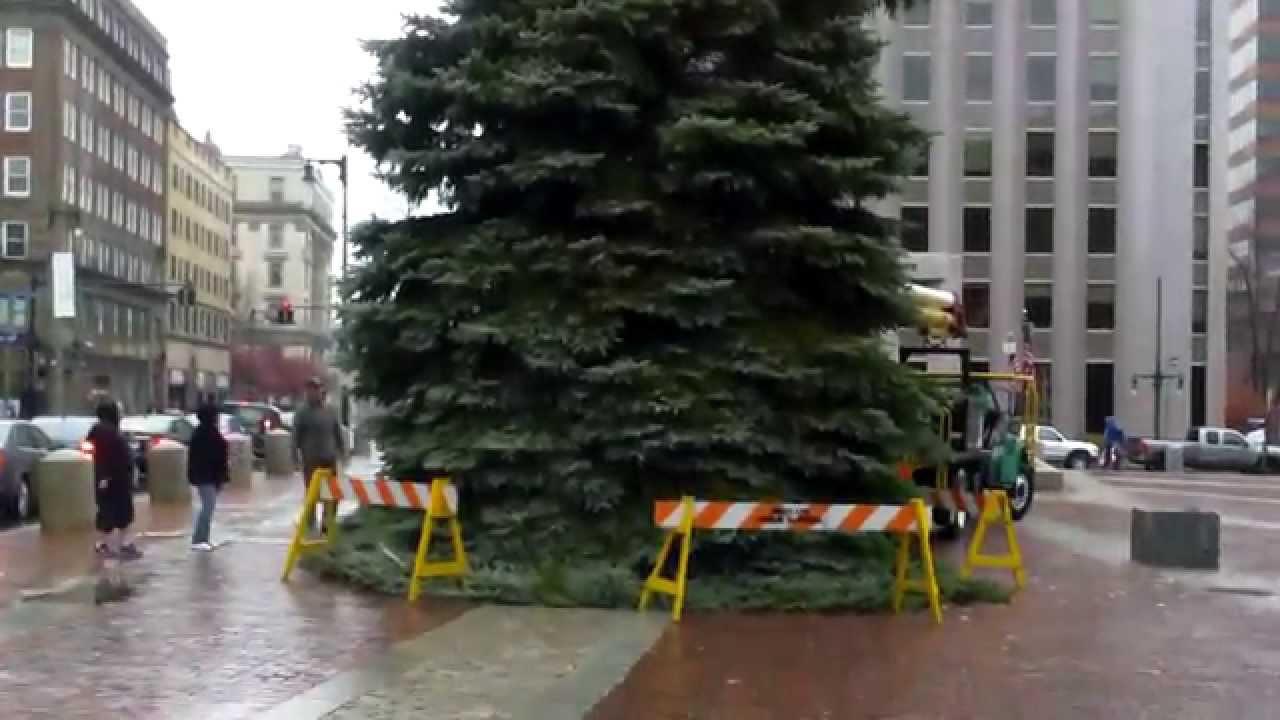 Christmas Tree, Portland, Maine, November 20, 2015 - YouTube
